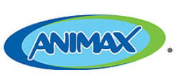 Entrevista com a gerente de marketing do canal Animax no Brasil